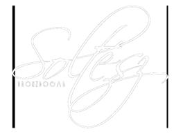 Bronzbogár